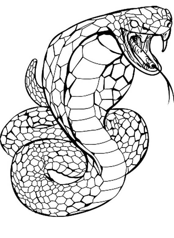 Animali serpente cobra da stampare e colorare for Disegni di cani da stampare e colorare