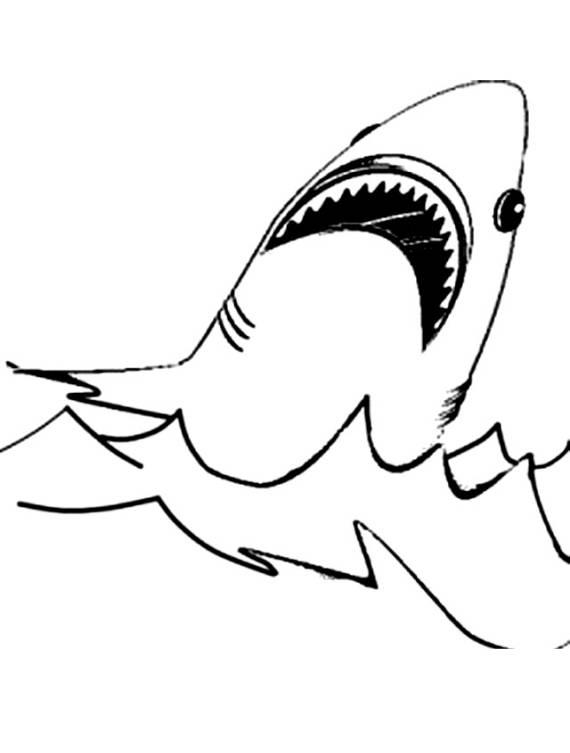 Disegni da colorare di animali for Disegno squalo