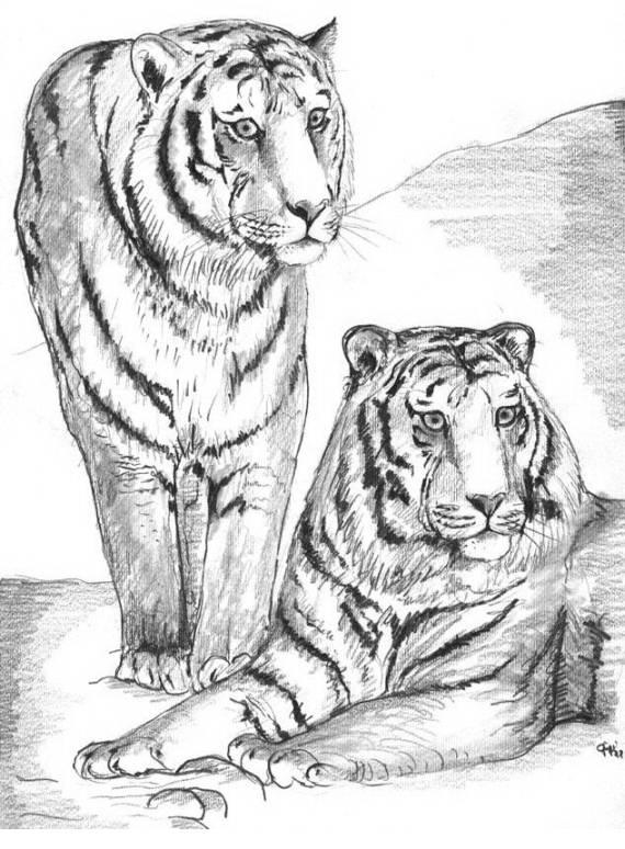 Disegni da colorare di animali for Disegni da colorare animali della foresta