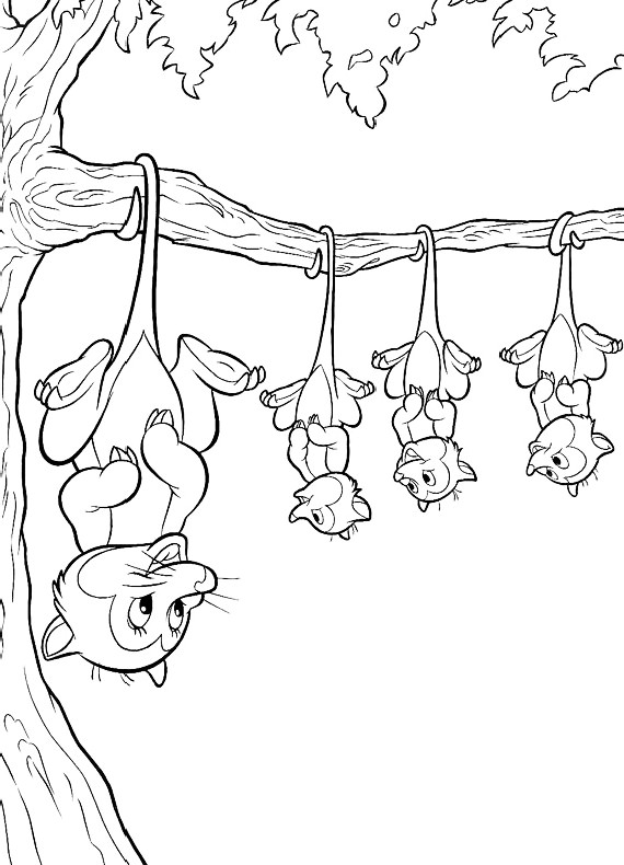opossum coloring pages - photo#8