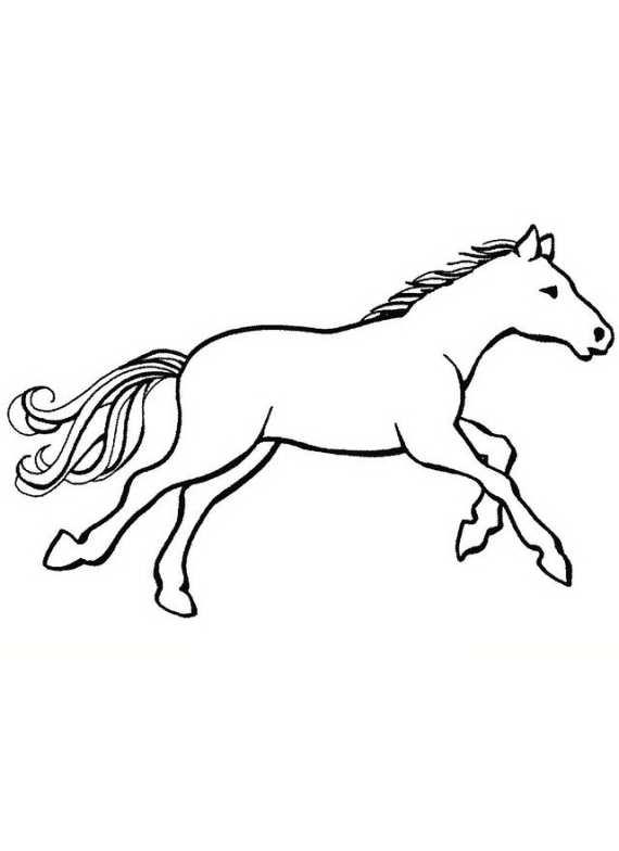 Cavalli da colorare al galoppo da stampare e colorare for Cavalli da colorare per bambini