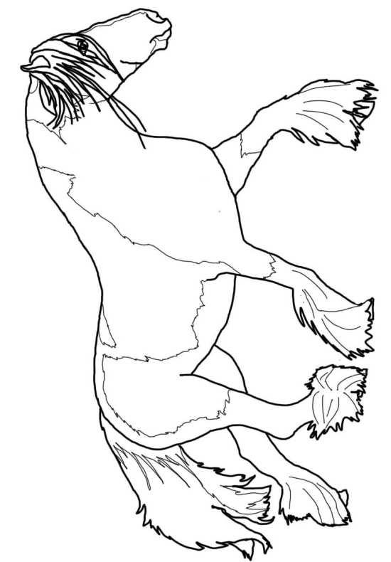 Disegni da colorare cavalli disegni da colorare di cavalli for Disegni cavalli da stampare