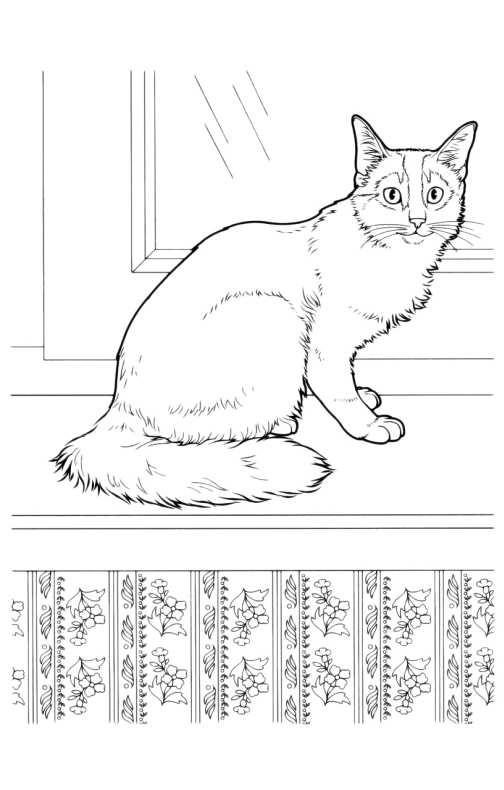 Disegni da colorare di gatti - Disegno finestra da colorare ...