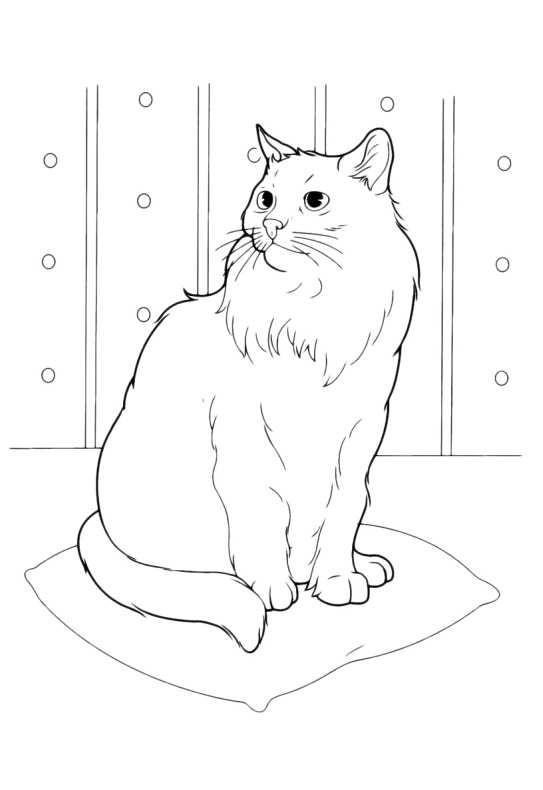 Gatti Da Colorare Gatto Attento Da Stampare E Colorare