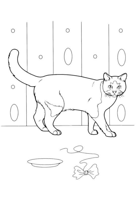 Giochi gratis di gattini