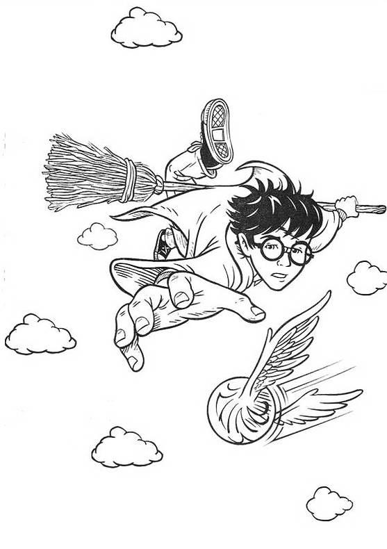 Disegni da colorare di harry potter for Quidditch coloring pages