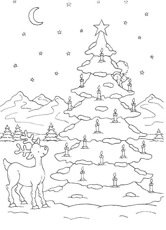 Natale renna e albero da stampare e colorare for Foto di alberi da colorare