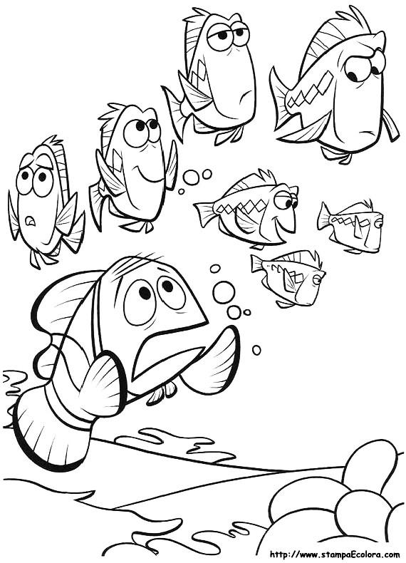 Nemo marlin preoccupato da stampare e colorare for Nemo da colorare e stampare