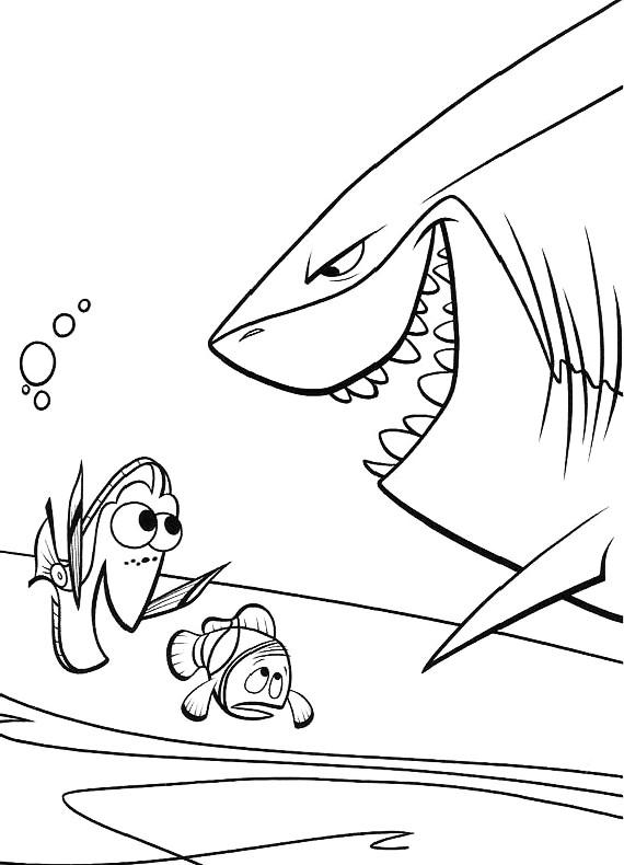 Nemo squalo bruto da stampare e colorare for Nemo da colorare e stampare
